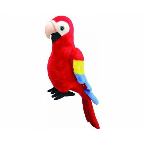 All About Nature: Parrot 25cm (K8261)