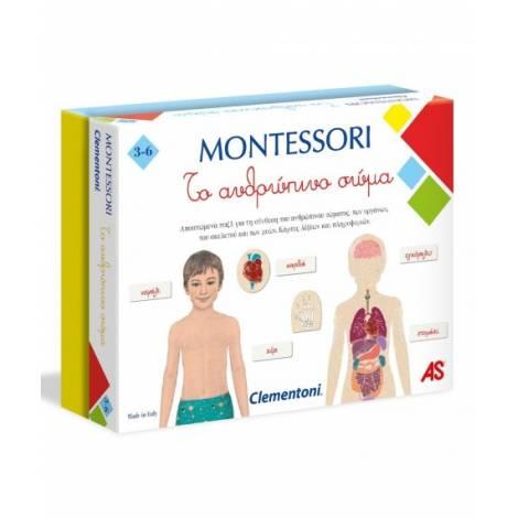 AS Montessori - Human Body -To ανθρώπινο σώμα  (1024-63225)