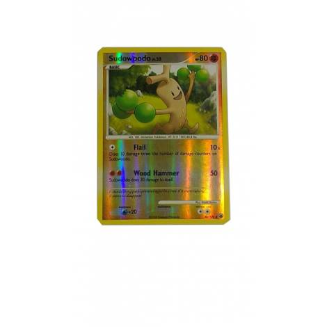 Pokemon TCG: Sudowoodo  (48/100)